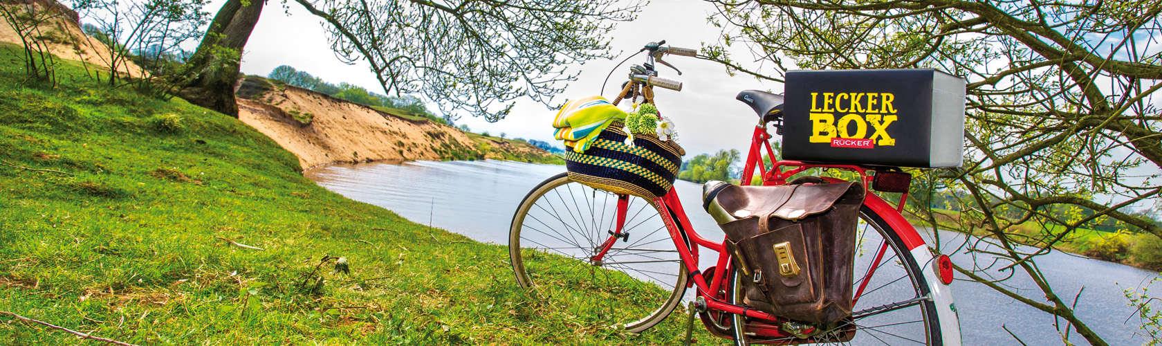 Rücker Lecker Box auf Fahrrad