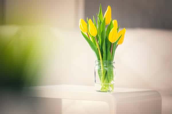Blumenvase aus RÜCKER Salatwürfel Glas